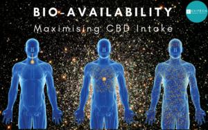 CIITECH_bioavailability CBD hemp